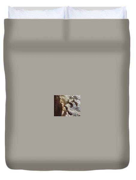 Milkweed Seed Burst Duvet Cover