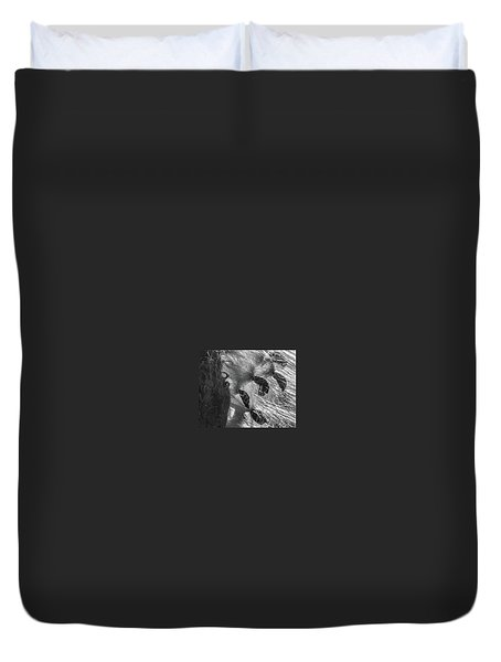 Milkweed Sunburst In Black And White Duvet Cover