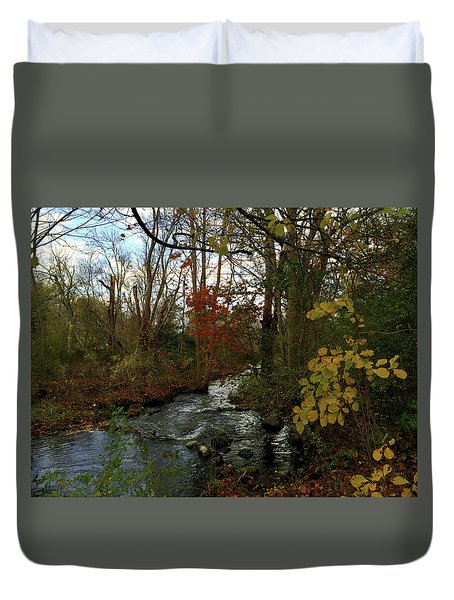 Mill Creek, Sandwich Massachusetts Duvet Cover