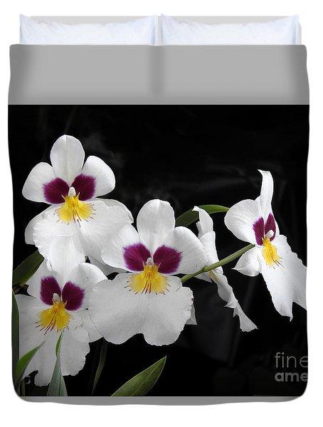 Miltonia Hybrid Orchid Duvet Cover