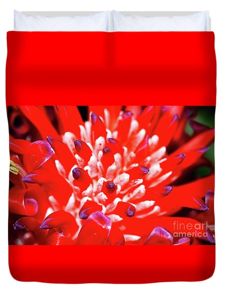 Duvet Cover featuring the photograph Flaming Torch Bromeliad By Kaye Menner by Kaye Menner