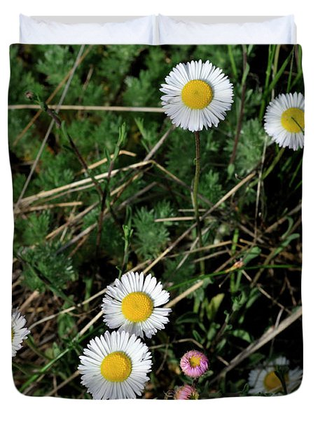 Duvet Cover featuring the photograph Mini Daisies by Ron Cline