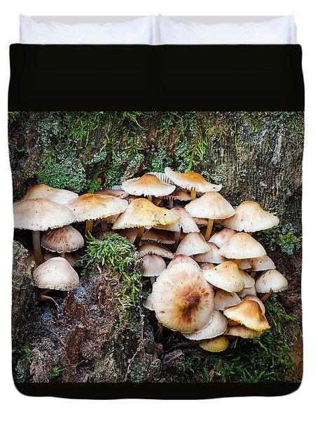 Mini Mushroom Landscape Duvet Cover