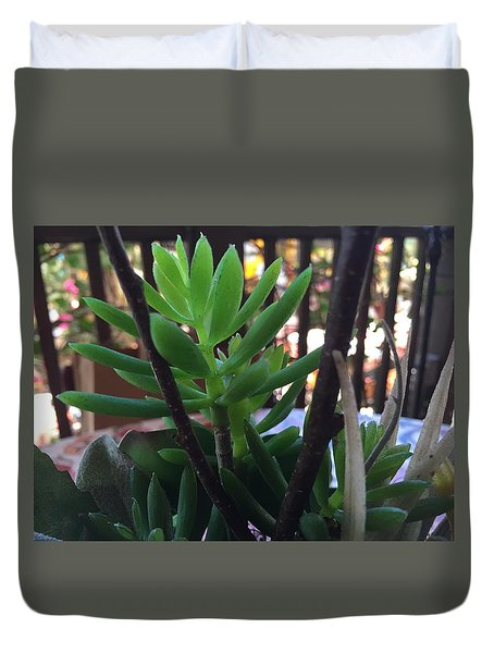Mini Succulent  Duvet Cover by Russell Keating