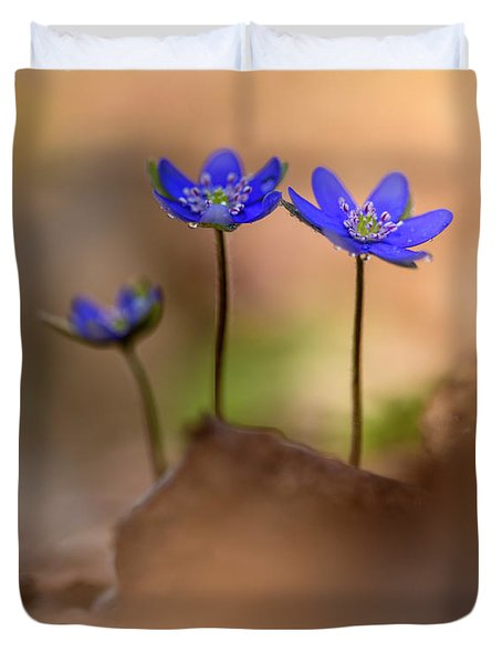 Duvet Cover featuring the photograph Minimalistic Impresion With Liverworts by Jaroslaw Blaminsky