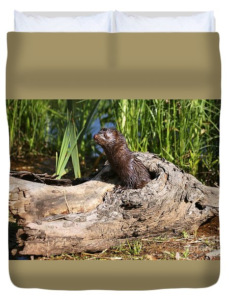 Duvet Cover featuring the photograph Mink Peeking Out by Myrna Bradshaw