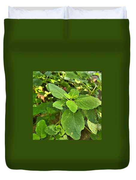Duvet Cover featuring the photograph Minnesota Plant Life by Lisa Piper