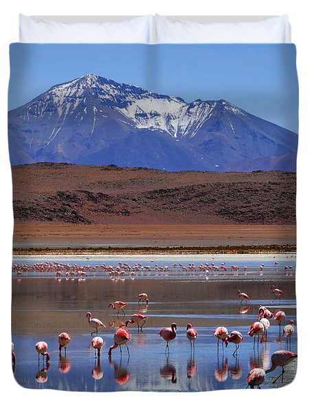 Duvet Cover featuring the photograph Mirage by Skip Hunt