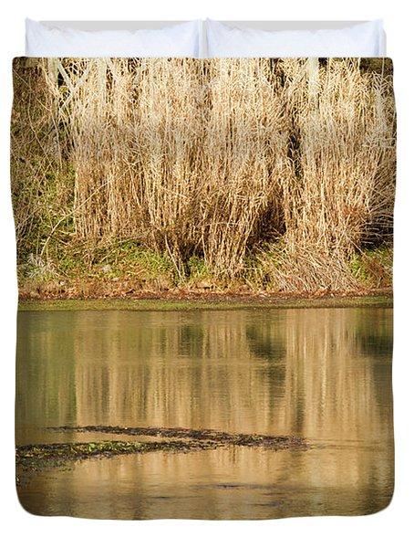Mirror Spring 1 Duvet Cover by Douglas Barnett