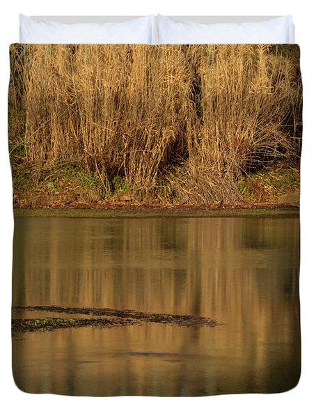 Mirror Spring 2 Duvet Cover by Douglas Barnett