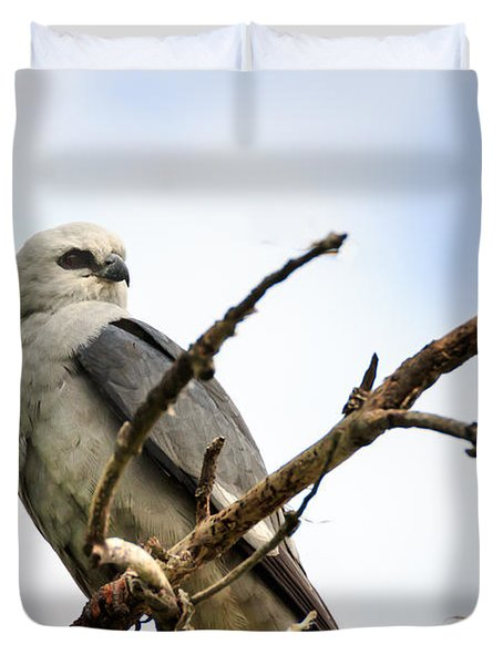 Mississippi Kite As Rest Duvet Cover