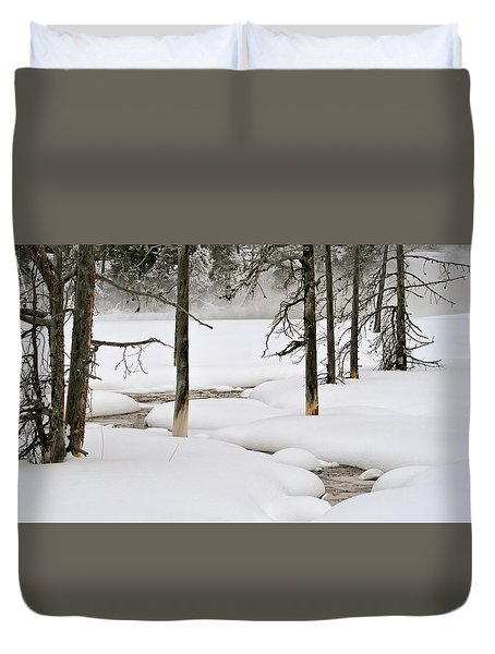 Duvet Cover featuring the photograph Misty Morn by Susan Rissi Tregoning
