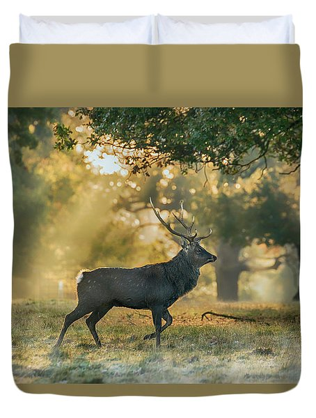 Duvet Cover featuring the photograph Misty Walk by Scott Carruthers