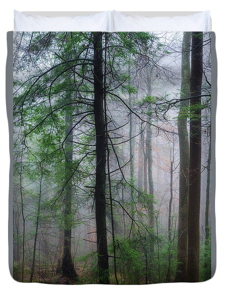 Duvet Cover featuring the photograph Misty Winter Forest by Thomas R Fletcher