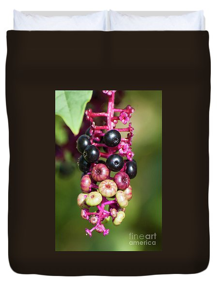 Mixed Berries On Branch Duvet Cover