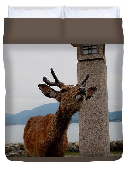 Miyajima Deer Duvet Cover