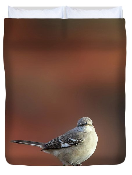 Mocking Bird Morning Square Duvet Cover