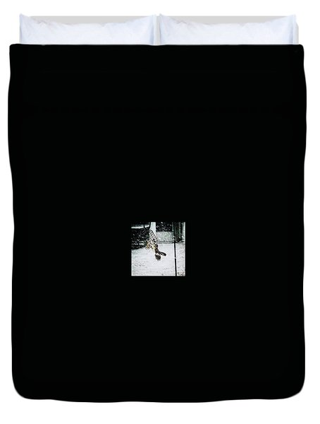 Duvet Cover featuring the photograph Mockingbird by Donald Paczynski
