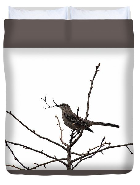 Mockingbird With Twig Duvet Cover