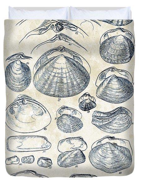 Mollusks - 1842 - 04 Duvet Cover