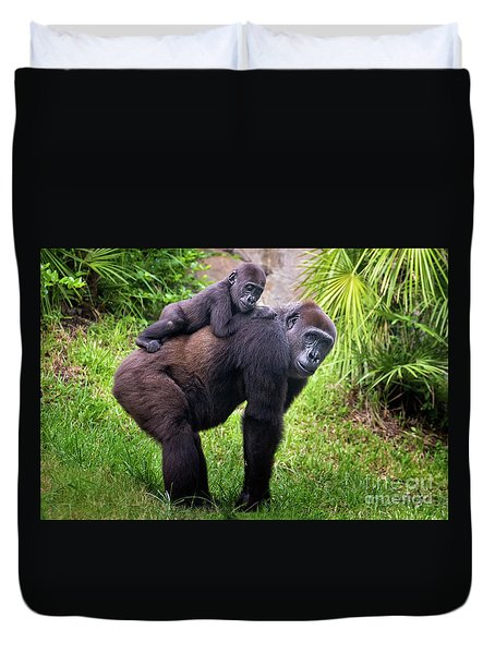 Mom And Baby Gorilla Duvet Cover by Stephanie Hayes