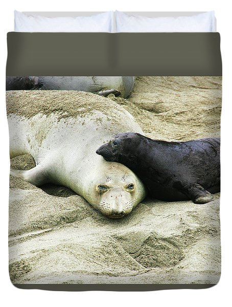 Duvet Cover featuring the photograph Mom And Pup by Anthony Jones