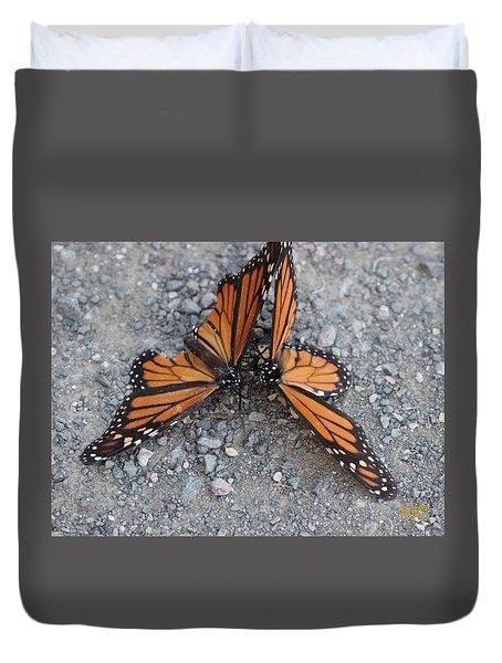Monarch Afterglow Duvet Cover