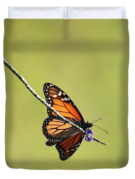 Monarch And Natural Green Canvas Duvet Cover by Carol Groenen