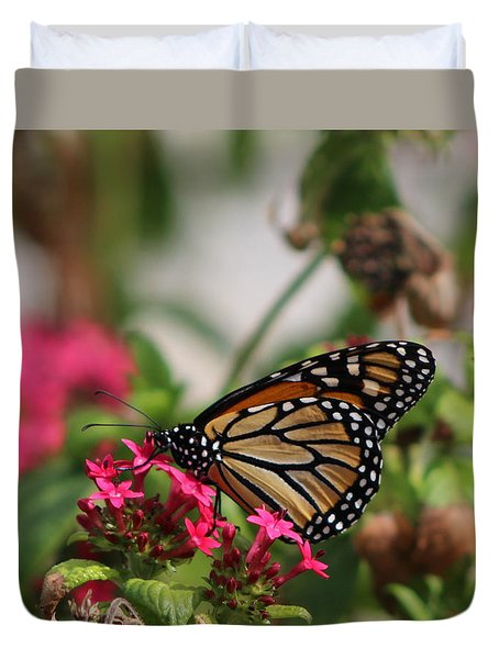 Monarch Butterfly On Fuchsia Duvet Cover