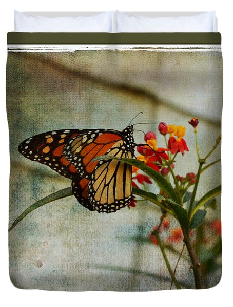 Monarch Butterfly 1 Duvet Cover