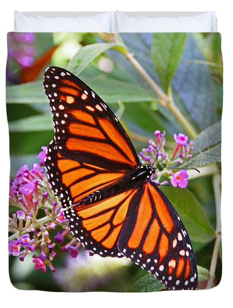 Monarch Butterfly 2 Duvet Cover