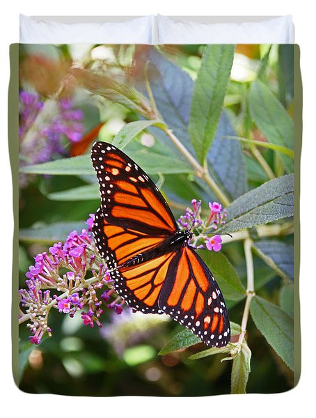 Monarch Butterfly 2 Duvet Cover by Allen Beatty