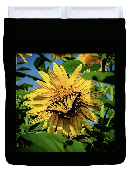 Male Eastern Tiger Swallowtail - Papilio Glaucus And Sunflower Duvet Cover