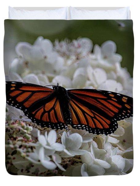 Monarch Butterfly Feeding On Hydrangea Tree Duvet Cover