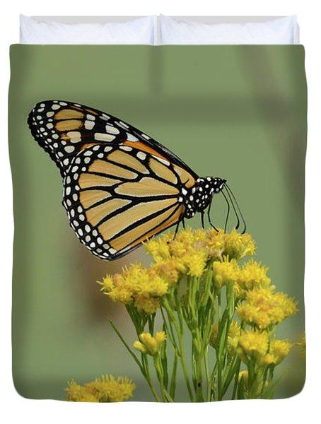 Monarch Butterfly Duvet Cover
