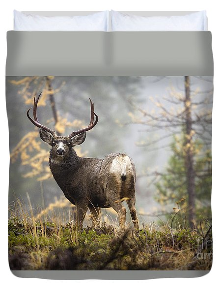 Monarch Of The Mountain Duvet Cover
