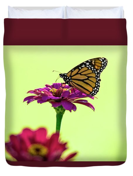 Monarch On A Zinnia Duvet Cover