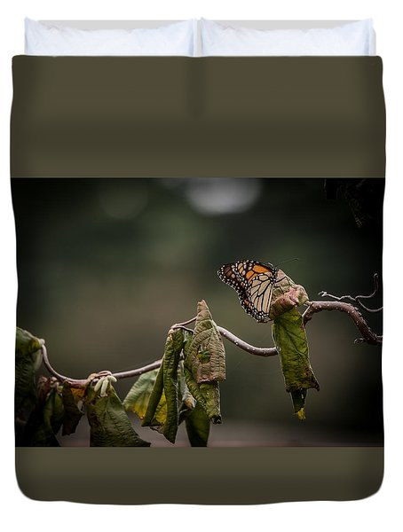 Monarch Duvet Cover by Ray Congrove