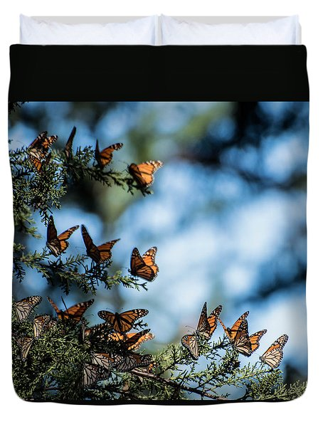 Monarchs In The Tree Duvet Cover