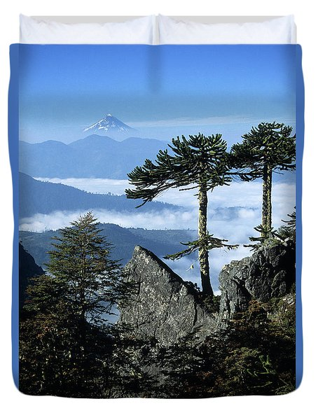 Monkey Puzzle Trees In Huerquehue National Park Duvet Cover by James Brunker