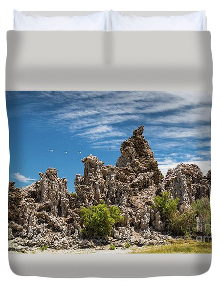Mono Lake Tufa Duvet Cover