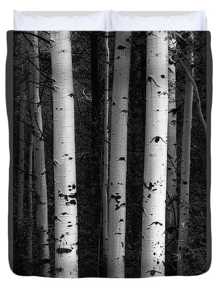 Duvet Cover featuring the photograph Monochrome Wilderness Wonders by James BO Insogna