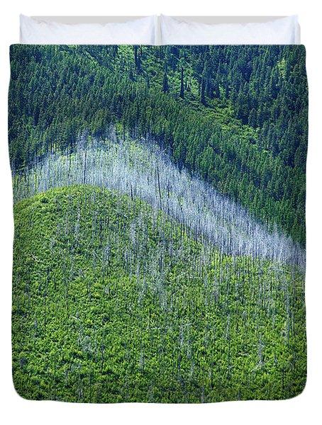 Montana Mountain Vista #4 Duvet Cover