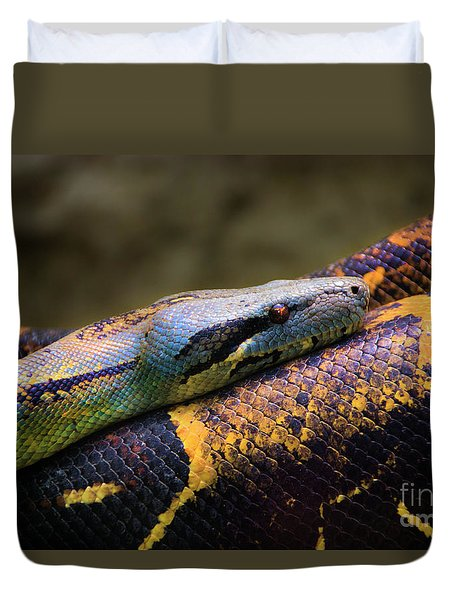 Don't Wear This Boa Duvet Cover by Al Bourassa