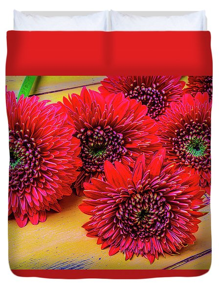 Moody Red Gerbera Dasies Duvet Cover by Garry Gay