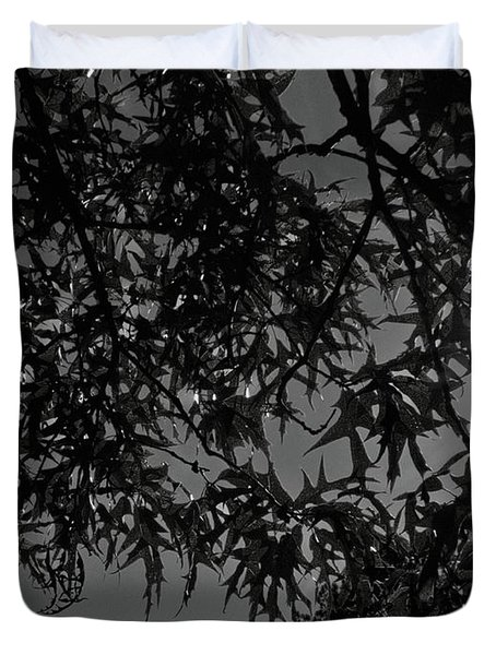 Duvet Cover featuring the photograph Moonlight by Betty Northcutt
