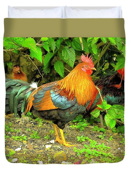 Moorea Chicken Duvet Cover by Bill Barber
