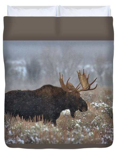 Duvet Cover featuring the photograph Moose In The Fog by Adam Jewell