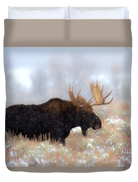 Duvet Cover featuring the photograph Moose In The Fog Silhouette by Adam Jewell