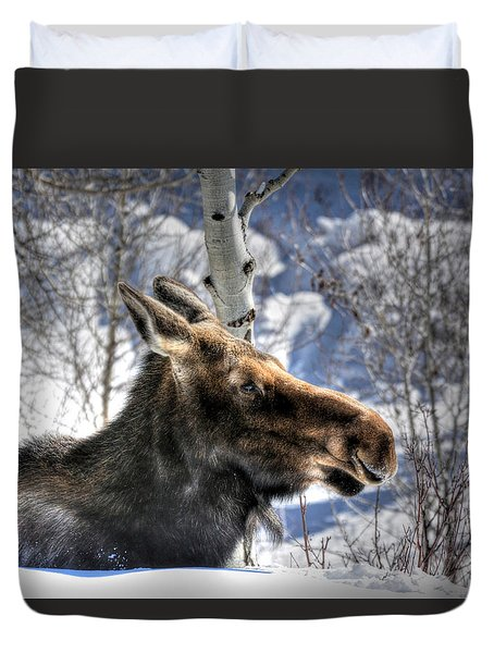 Moose On The Loose Duvet Cover